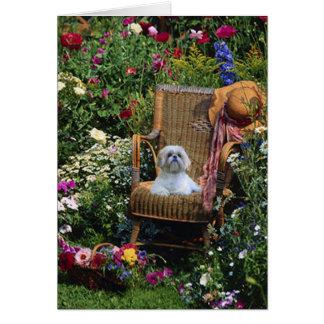Shih Tzu Garden Card