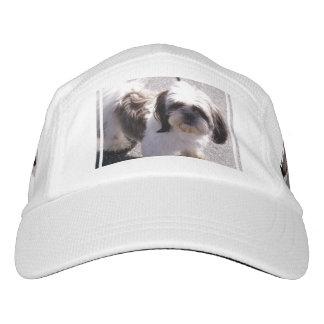 Shih-Tzu Hat