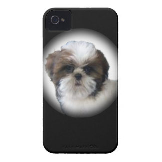 Shih-Tzu iPhone 4 Case