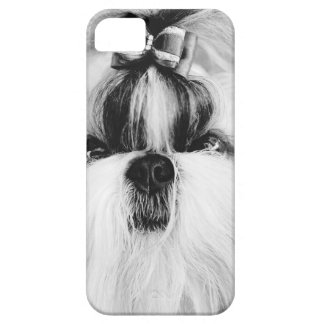 Shih Tzu iPhone 5 Case