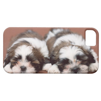 Shih Tzu iPhone 5 Covers