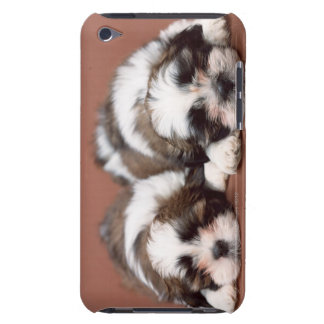 Shih Tzu iPod Touch Case