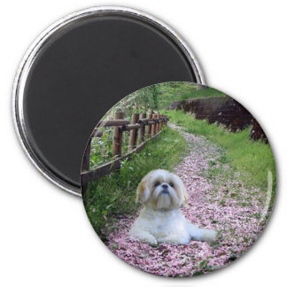 Shih Tzu Magnet Purple Flowers