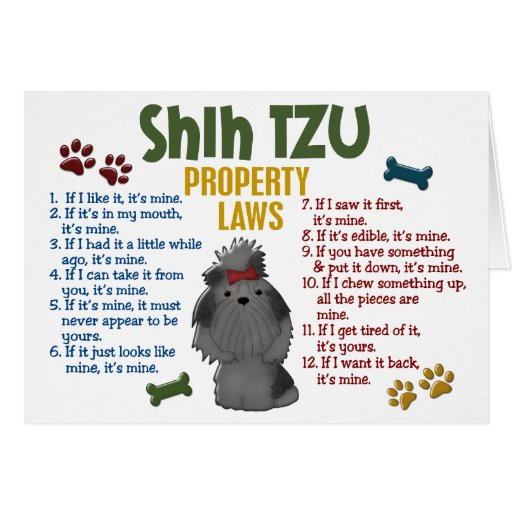 Shih Tzu Property Laws 4 Cards