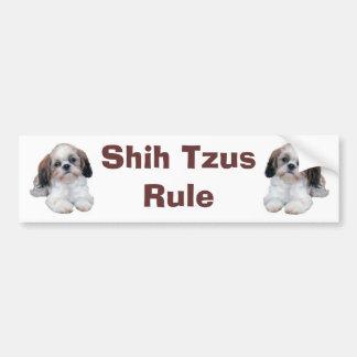 Shih Tzu Puppies Rule Bumper Sticker