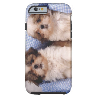 Shih Tzu puppies under a checked blanket Tough iPhone 6 Case