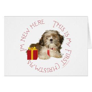 Shih Tzu Puppy First Christmas Card