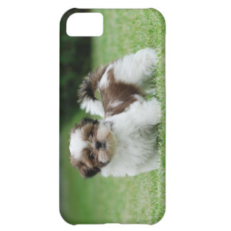 Shih tzu puppy iPhone 5C case