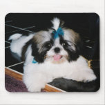 Shih-Tzu Puppy Mousepad