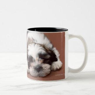 Shih Tzu Two-Tone Coffee Mug