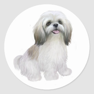 Shih Tzu - White with grey-tan Classic Round Sticker