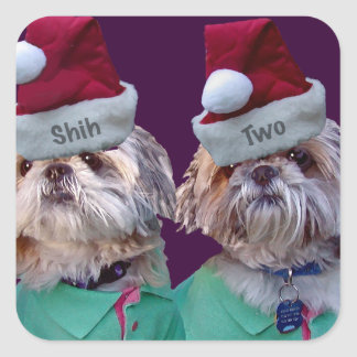 Shih Tzues Shih Two Christmas Sticker