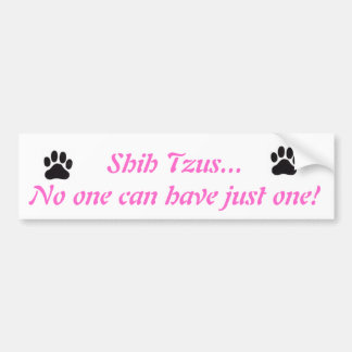 Shih Tzus...No one can have just one! Bumper Stick Bumper Sticker