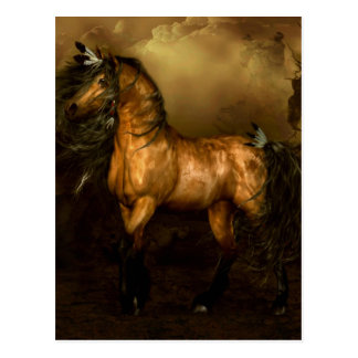 Shikoba Native American Horse Postcard