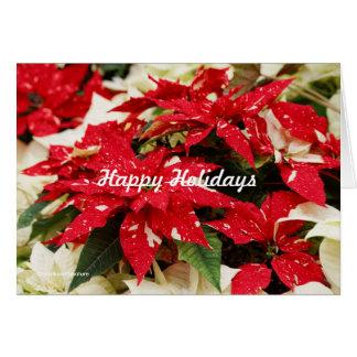 Shimmer Surprise Poinsettias Greeting Card