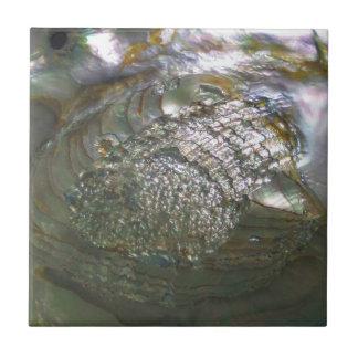 Shimmering Abalone Seashell, Beautiful Nature Small Square Tile