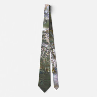 Shimmering Abalone Seashell, Beautiful Nature Tie
