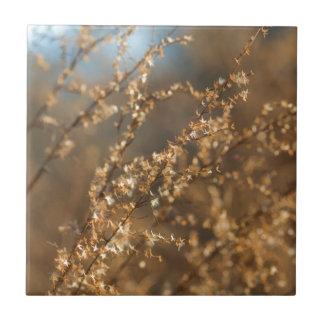 Shimmering Golden Prairie Grass Tiles