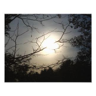 Shine Through Photo Print