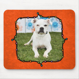 Shiner - Boxer Mouse Pad