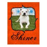 Shiner - Boxer Postcards