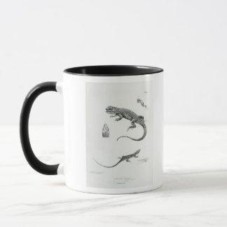 Shingled Iguana Mug