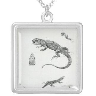 Shingled Iguana Silver Plated Necklace