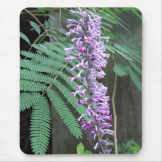 Shining Butterfly Bush Mouse Pad