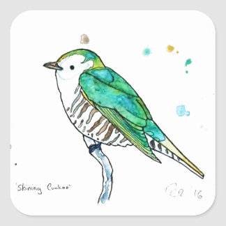 Shining Cuckoo Square Sticker