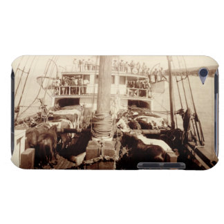 Shipping Cattle on the 'W.G. Hall', Hawaii, 1890s Barely There iPod Covers