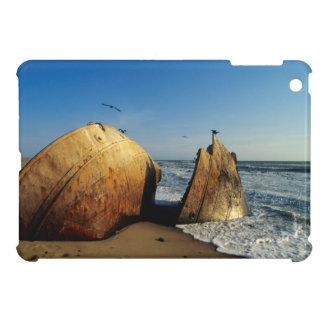 Shipwreck On Beach, Skeleton Coast, Namibia iPad Mini Case