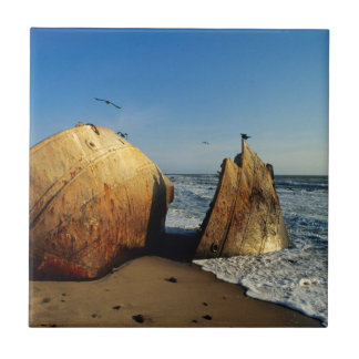 Shipwreck On Beach, Skeleton Coast, Namibia Tile