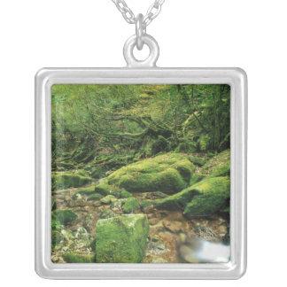 Shiratani Unsuikyo, Yakushima, Kagoshima, Japan Silver Plated Necklace