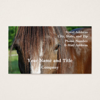 shire business card