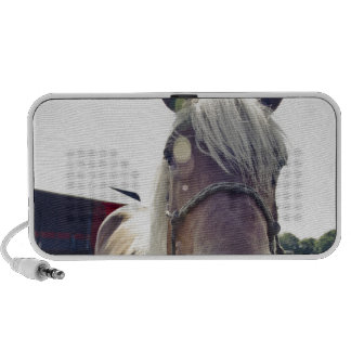 SHIRE HORSE IN SUNLIGHT WITH NOSE UP TO CAMERA iPhone SPEAKER