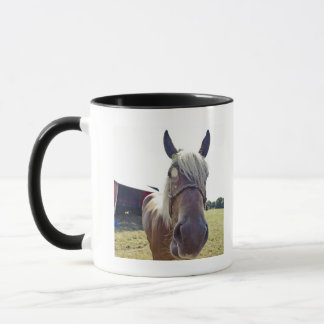 SHIRE HORSE IN SUNLIGHT WITH NOSE UP TO CAMERA MUG