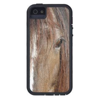 shire iPhone 5 cases