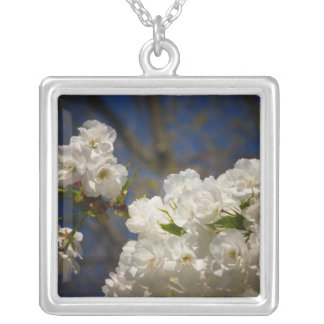 Shirotae Cherry Blossoms In Full Bloom Square Pendant Necklace