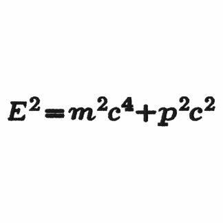 shirt Einstein full