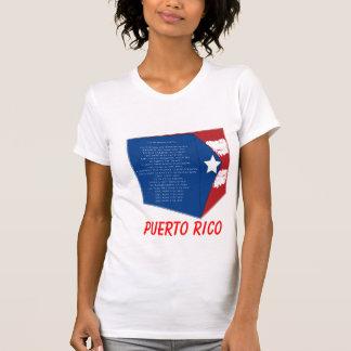 shirt_verticalPR flag Puerto Rico Tee Shirts