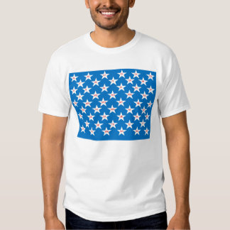 SHIRT WITH FIFTY STARS AND US STATE CODES.