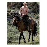 Shirtless Putin Rides a Horse Post Card