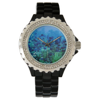 Shoal of Blue Discus Fish Wristwatches