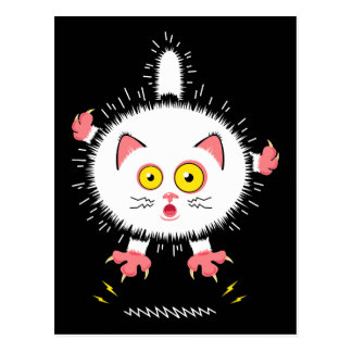 Shocked Cute Cat Postcard