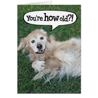 Shocked Golden Retriever Birthday Card