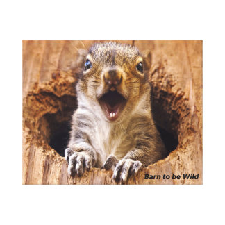 Shocked Squirrel Canvas Print