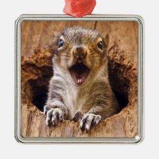 Shocked Squirrel Christmas Ornament