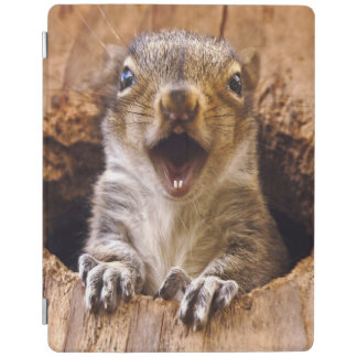Shocked Squirrel iPad Cover