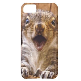 Shocked Squirrel iPhone 5C Case