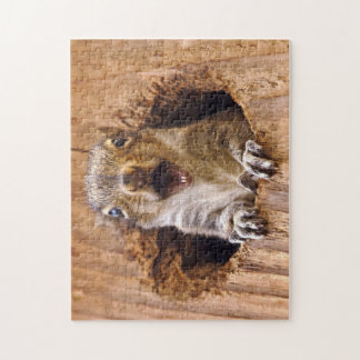 Shocked Squirrel Jigsaw Puzzle